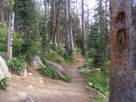 Gunnison National Forest Trail No. 531, the Crest Trail