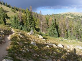 The west slope of the Sawatch Range, along the Crest Trail