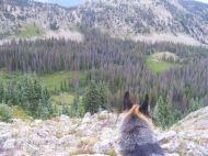 Leah looking into North Fooses Creek