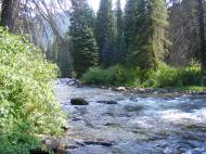 The coursing South Fork White River