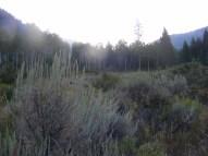 Horizon aglow above the South Fork Canyon, below Fowler Peak