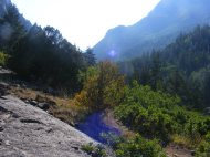 A view up South Fork Canyon