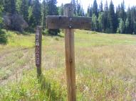 Marvine Trail No. 1823, White River National Forest