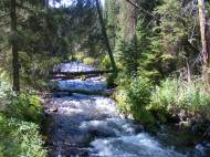 Purling Marvine Creek near the Flat Tops Wilderness boundary