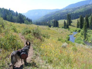 Leah on the Marvine Creek Trail No. 1823