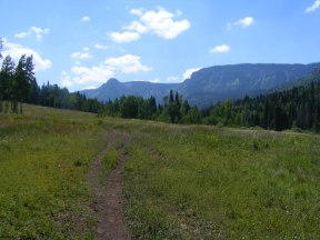 Headed up Marvine Creek in the Flat Tops Wilderness