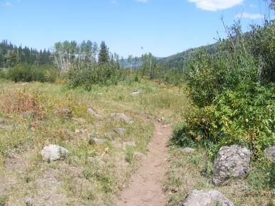Marvine Trail No. 1823 below Slide Lake