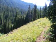 The Marvine Trail above the lakes