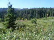 Still in the Marvine Creek drainage, near the top of The Flat Tops