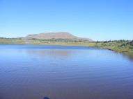 Twin Lakes under Little Marvine Peaks