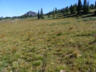 Little Marvine Peaks, looking from the base of Big Marvine Peak