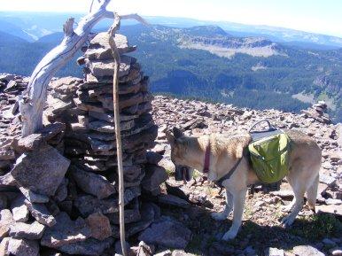 Draco atop Big Marvine Peak