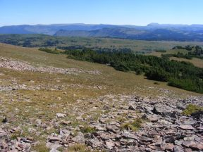 Looking over The Flat Tops to the east of Big Marvine Peak