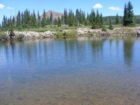 Near East Marvine Creek, looking up toward the Little Marvine Peaks