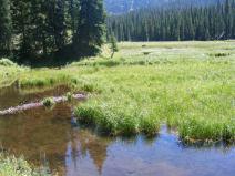 Small pond on East Marvine Creek