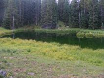 One of many unnamed ponds on East Marvine Creek