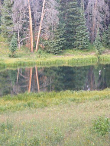 Reflecting pond near East Marvine Creek