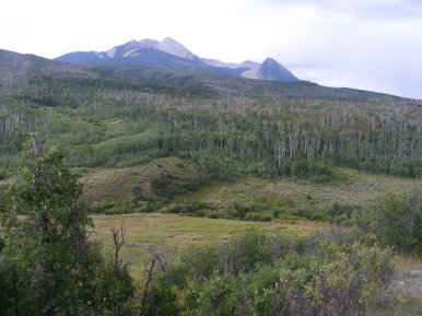 The Ragged Mountains, on the Drift Creek Trail No. 815