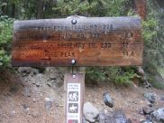 At the East Fork Trailhead, Uncompahgre National Forest