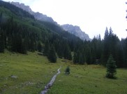 Near the lower end of the East Fork No. 228 Trail, Uncompahgre Wilderness