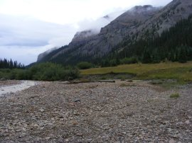 East Fork Cimarron River in the northern San Juan Mountains