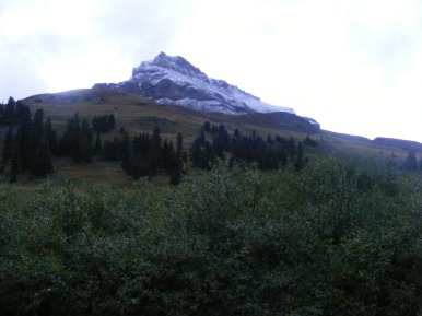 Near camp, looking up to Uncompahgre Peak