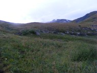 Alpine tundra in the northern San Juan Mountains, in the early morning