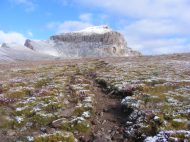 Climbing up to the divide with Nellie Creek, Uncompahgre Peak rearing up
