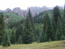 Lush sub-alpine forest below hoodoo oddities on the East Fork Cimarron River