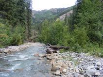 East Fork Cimarron River at the East Fork Trailhead