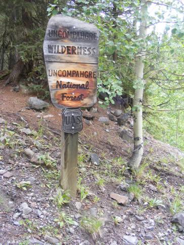 Near the East Fork Trailhead