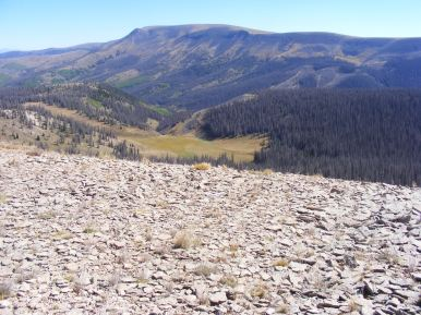 Wannamaker Creek and Mesa Mountain, seen from Palmer Mesa