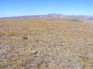 Looking west across Palmer Mesa to La Garita Peak