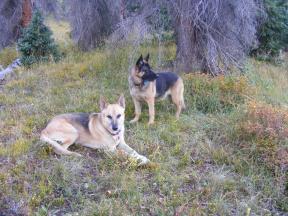 Draco and Leah near camp