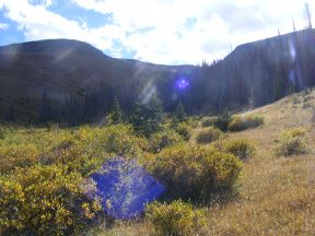 The unnamed tributary of Twin Peaks Creek where I set up camp in the La Garita Mountains of Colorado