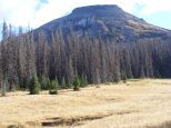 Late Summer in the La Garita Mountains, about a mile north of Halfmoon Pass