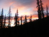 Dawn over my camp on an unnamed tributary of Twin Peaks Creek