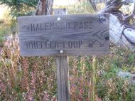Trail junction on the topside of Wheeler Geologic Area