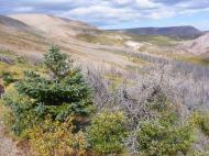 The basin of Twin Peaks Creek
