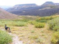 Leah descending the Twin Peaks Creek Trail No. 914