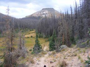 On the Halfmoon Pass Trail No. 912