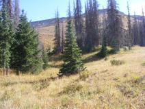 Between camp and Halfmoon Pass