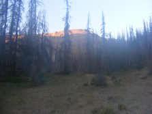 A look up at the sunlit mesa above my camp on the unnamed upper fork of Twin Peaks Creek