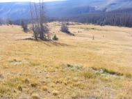 The park in the upper basin of South Saguache Creek