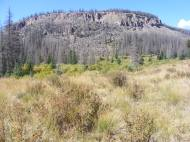 South Saguache Creek to the left of this mesa, Twin Peaks Creek to the right