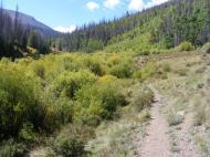 Dazzling colors along the South Fork Saguache Trail No. 781