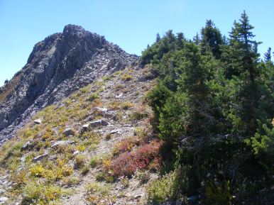 South of Angel Pass