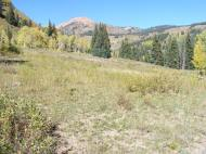A fine late Summer's day in the Elk Mountains of Colorado, in the lower portion of Poverty Gulch