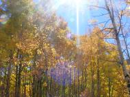 Hiking along in the magical light of a Fall day in the Rocky Mountains of Colorado