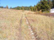 Carbon Trail No. 436 on Gibson Ridge's south side, above aspen line